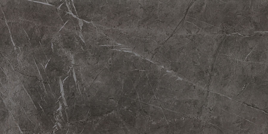EvolutionMarble Grey Lux 60×120
